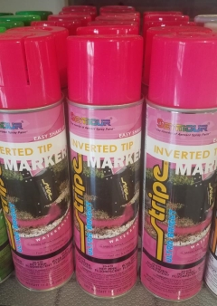 Rental store for PAINT PINK in Evansville IN